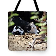 Sleepy Arizona Cows Tote Bag