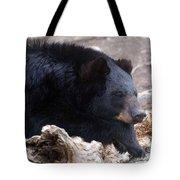 Sleepy Black Bear Tote Bag