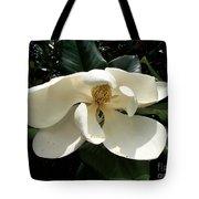 Sleepy Head Magnolia Tote Bag