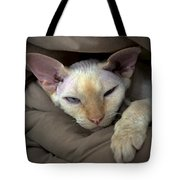 Sleepy Oliver 1 Tote Bag