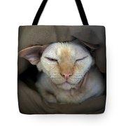 Sleepy Oliver 2 Tote Bag