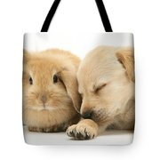 Sleepy Puppy And Rabbit Tote Bag