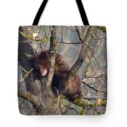 Sleepy Time Tote Bag