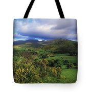 Slieve Bearnagh, Mourne Mountains, Co Tote Bag