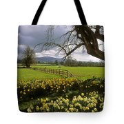 Slievenamon, Ardsallagh, Co Tipperary Tote Bag