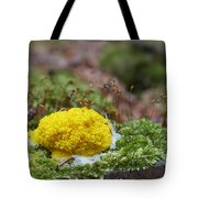 Slime Mould Tote Bag