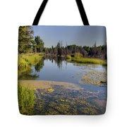 Slow Snake River Tote Bag