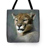 Slumbering Mountain Lion Tote Bag