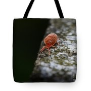 Small Red Insect Tote Bag