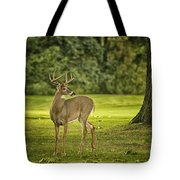 Small Stag Tote Bag