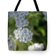 Small White Wildflowers  Tote Bag