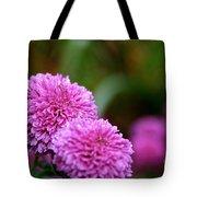 Small Wonder Mum Tote Bag