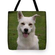 Smiley  0151 Tote Bag