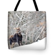 Smiling Moose Tote Bag