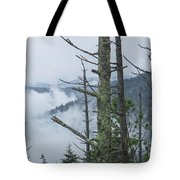 Smokey Mountain Forest No.612 Tote Bag