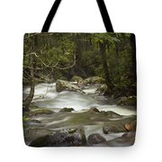Smokey Mountain Stream No.326 Tote Bag