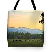 Smoky Mountain Horse Herd Tote Bag