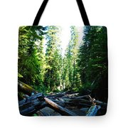 Snag On Iron Creek Tote Bag