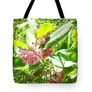 Snail On Leaf Tote Bag
