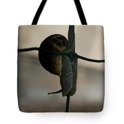 Snail On The Fence Tote Bag