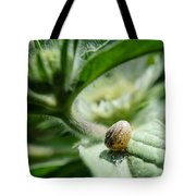 Snail On The Leaf Tote Bag