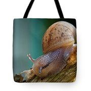 Snail Traversing Tote Bag