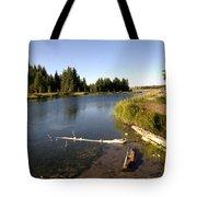 Snake River At Schwabacher Landing  Tote Bag