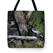 Snakebird At The Rookery Tote Bag