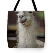 Snickering Alpaca Tote Bag