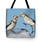 Snow Buntings And Ice Tote Bag