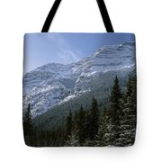 Snow Capped Mountain Tote Bag