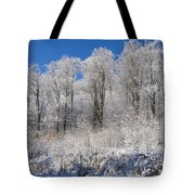 Snow Covered Maple Trees Iron Hill Tote Bag