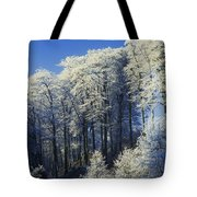 Snow Covered Trees In A Forest, County Tote Bag