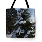 Snow Crusted Evergreen Tote Bag