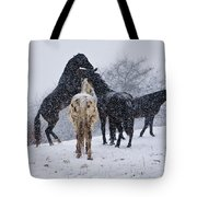 Snow Day I Tote Bag by Betsy Knapp