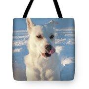 Snow Dog 0249 Tote Bag