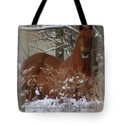 Snow Dreams Tote Bag