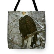Snow Eagle Tote Bag