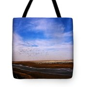Snow Geese At Rest Tote Bag