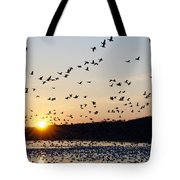 Snow Geese At Sunrise Tote Bag