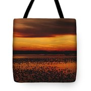 Snow Geese Come To Rest In Squaw Creek Tote Bag