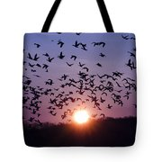 Snow Geese Migrating Tote Bag