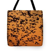Snow Goose Migration Tote Bag by Mircea Costina Photography