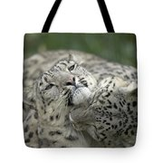 Snow Leopards Playing Tote Bag