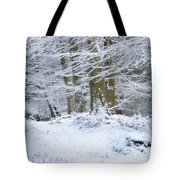 Snow Magic Tote Bag