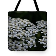 Snow Sport Yarrow Tote Bag