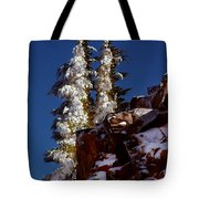 Snow Tipped Trees  Tote Bag