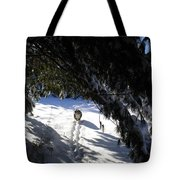 Snow Trail-under The Boughs Tote Bag