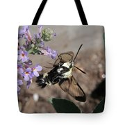 Snowberry Clearwing Moth Feeding Tote Bag