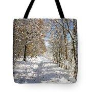 Snowpath Tote Bag